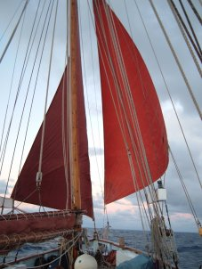 Twin headsails