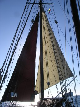 Jib and staysail poled out