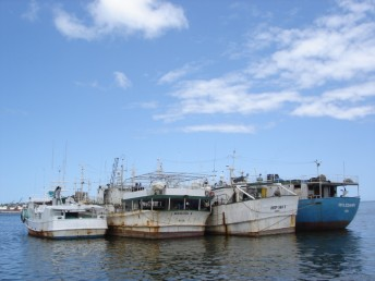 Fishing boats in Suva harbour