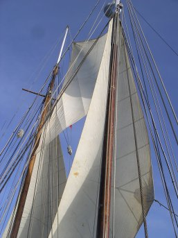 Mizzen staysail, fishermans and jib, before mizzen