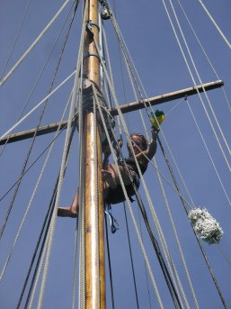 Merryn up the mast for the first time