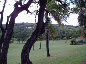 Lots of mowed grass on Mustique