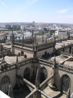 The Cathedral from the 'Giralda' tower