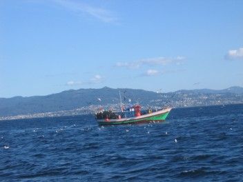 Fishing boat with Vego in the distance