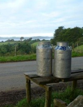 Milk churns waiting for colletion, Chiloe